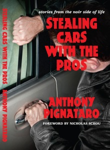 5995f-stealingcarscover